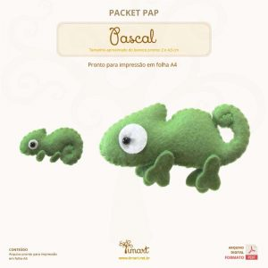 packet-pap-pascal